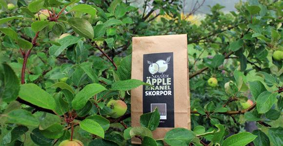 Nu doftar det ljuvligt av äpple och kanel i Junsele.